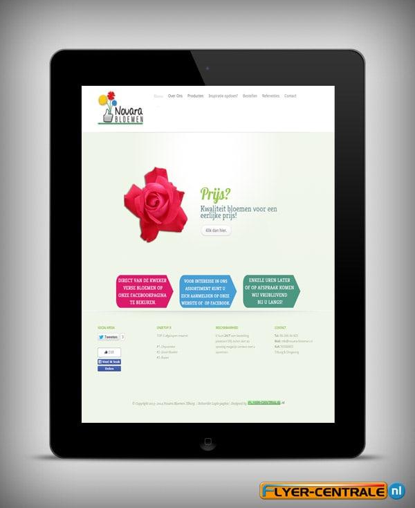 Webdesign voorbeeld. Klik voor een overzicht.